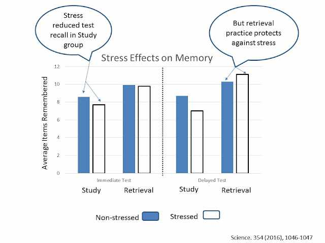 The effects of stress on memory