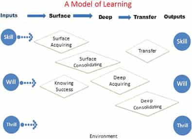 The model of learning proposed by Hattie and Donaghue